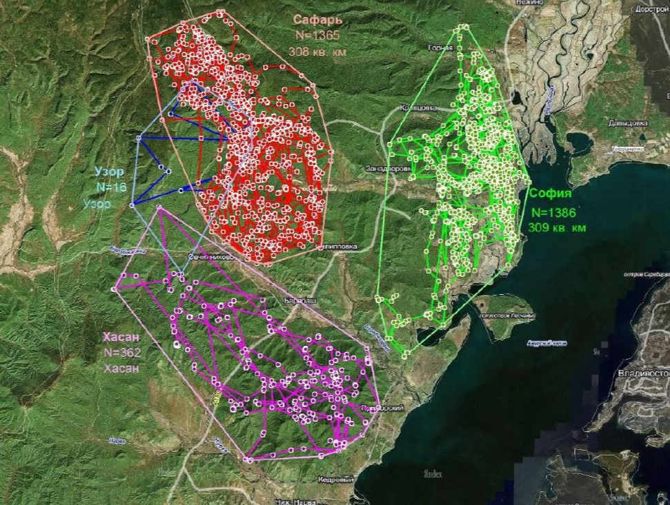 Satellite telemetry routes and territories of Amur leopards