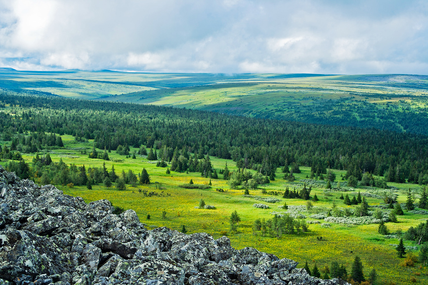 Tundra on Karkush Plateau, Perm region, Russia
